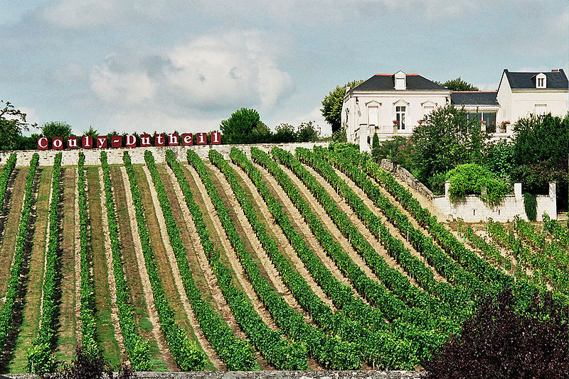 Couly-Dutheil-Loire-vineyard