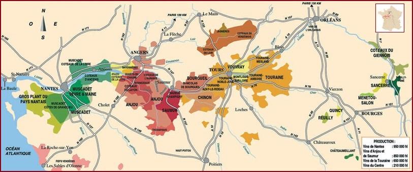 vineyards-Loire-valley
