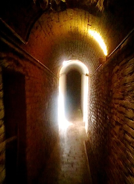 There were dim ancient cellars.