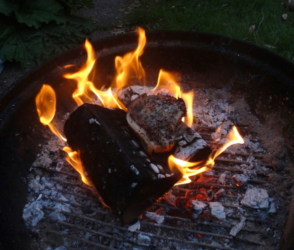 Andy's been experimenting with putting meat directly onto the fire. He likes it so far.