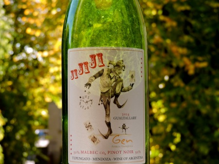 JiJiJi: half Malbec and half Pinot Noir. The CO2 in between on the label is the winemaker's hint that carbonic maceration was used.
